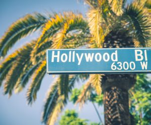 Hollywood boulevard street sign on the Walk of Fame, Los Angeles