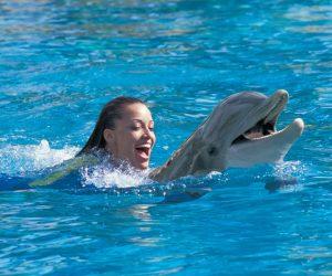 dolphingirldolphincrasmall