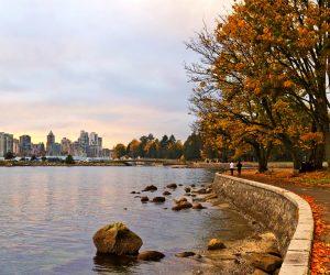 vancouver-stanley-park-wallpaper-2