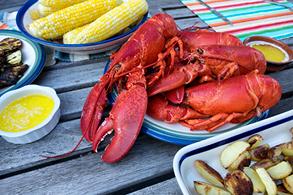 bilder-hyre-side-293x195-new-england-lobster