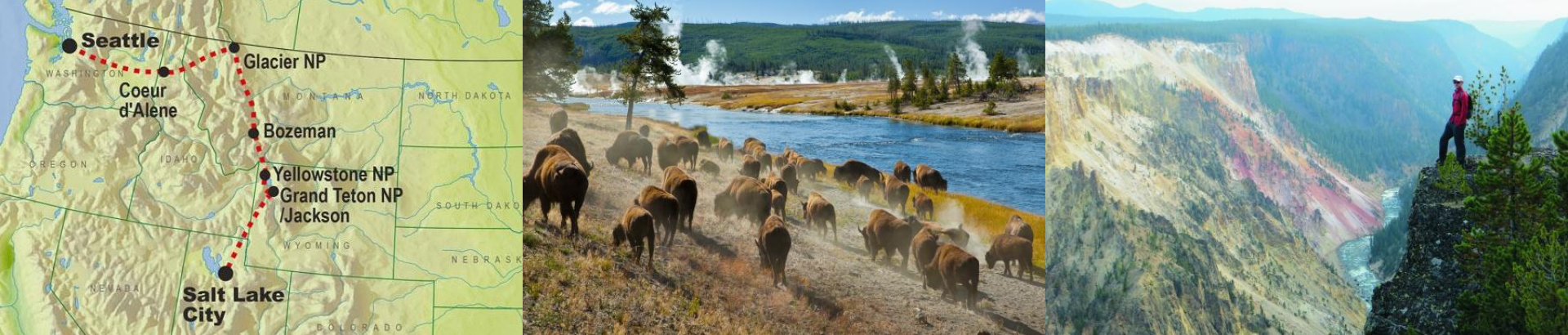 bilde-over-tilbud-1920x410-yellowstone-wildlife-trails